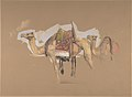 Two Camels MET DP805927.jpg
