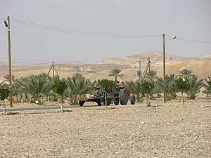 Tzofar - Agriculture in Tzofar