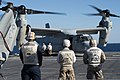 U.S. Sailors and Marines watch an MV-22 Osprey tiltrotor aircraft land on the flight deck of the amphibious transport dock ship USS Denver (LPD 9) in the Coral Sea Aug. 8, 2013 130808-N-KL846-084.jpg