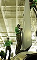 US Navy 020701-N-2781V-504 F-14 maintenance in hangar bay.jpg