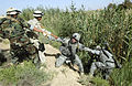 US Navy 070712-N-9500T-105 U.S. Army Sgt. Steven Calhoun is assisted by Iraqi army soldiers in pulling out a Soldier after he fell into an irrigation ditch during a joint mission.jpg
