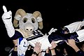 US Navy 071103-N-5215E-364 Naval Academy mascot Bill the Goat surfs across a crowd of Midshipmen during a homecoming celebration for Navy's 46-44 triple-overtime victory over Notre Dame.jpg