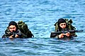 US Navy 090624-N-7883G-034 Basic Underwater Demolition-SEAL (BUD-S) students wade ashore on San Clemente Island during an over the beach exercise.jpg
