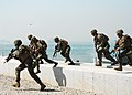 US Navy 100915-N-4894D-162 Marines participate in the 60th anniversary of teh Incheon Landing Operation.jpg