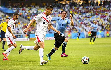 Uruguay - Costa Rica FIFA World Cup 2014 (16).jpg