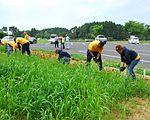 VP-8 beautifies Misawa Park 120723-N-ZA795-029.jpg