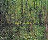 Van Gogh - Bäume und Unterholz2.jpeg
