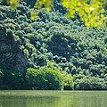 Vegetación de ribera en el Parque Natural de Arribes del Duero.jpg