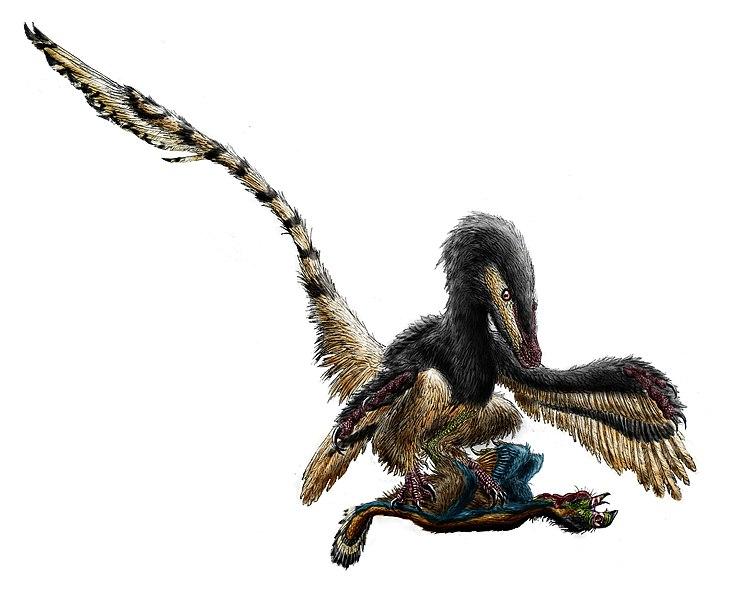 File:Velociraptor restraining an oviraptorosaur by durbed.jpg
