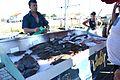 Vente du poisson pêché avec le fileyeur Le P'tit Jules (3).JPG