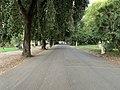 Viale Orologio - Rome (IT62) - 2021-08-30 - 1.jpg