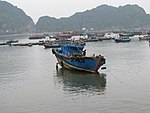 Vietnam 08 - 29 - Cat Ba harbour (3170464640).jpg
