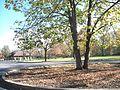 View - panoramio (4).jpg