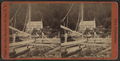 View at the Ferry Dock, foot of the Palisades, from Robert N. Dennis collection of stereoscopic views.png