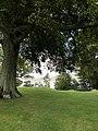 View from island in Loch Leven.jpg