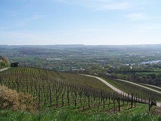 Bech-Kleinmacher - Vineyards near Bech-Kleinmacher with Germany in the background