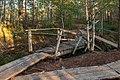 Viru Bog, Parque Nacional Lahemaa, Estonia, 2012-08-12, DD 71.JPG