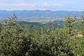 Vista desde Monte Santa Maria Tiberina 10.JPG