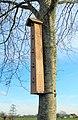 Vogelhotel - Dries in Aalter - 2021.jpg
