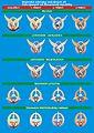 Vojenské odznaky Vzdušných síl Ozbrojených síl Slovenskej republiky.jpg