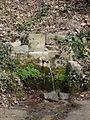 Voltants de Sant Miquel de Solterra - font dels Abeuradors P1090575.JPG