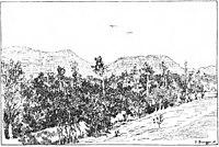 Vom Kaukasus zum Persischen Meerbusen b 159.jpg