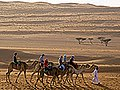Wahiba Sands (33)-2 cropped-small.jpg