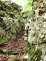 Wanderweg Goumois-Saignelégier.jpg