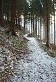 Wanderweg zum Romkerhaller Wasserfall - panoramio.jpg