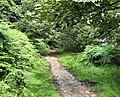 Waterside Walk - geograph.org.uk - 1411916.jpg