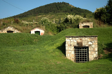 Colour photo. Strongly embedded in the folds of a grassy valley, four small buildings in irregular stone masonry, with flat or sloped roofs, with barred doors, the entrance of the cellars are sunk into the ground. In the background the bushy land rises gently to the wooded hill which stands against a uniformly blue sky.