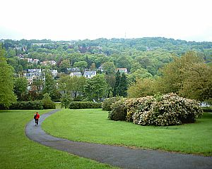 Bingham Park and Whiteley Woods - View of Ranmoor from Bingham Park.