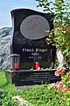 Wiener Zentralfriedhof - Gruppe 40 - Franz Ringel.jpg
