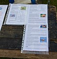 Wikipedia article reuse, Cheshire Game and Country Fair 2014.jpg
