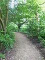 Woodland path, Dyrham Park - geograph.org.uk - 1306879.jpg
