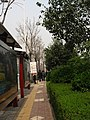 Yanta, Xi'an, Shaanxi, China - panoramio - monicker (1).jpg