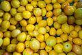 Yellow tomatoes (26863025983).jpg