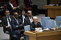 Yukiya Amano briefs Security Council (01890348) (47527122281).jpg