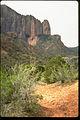 Zion National Park ZION9557.jpg