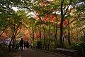 Zuihoji park01s3872.jpg