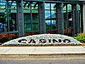 """CASINO"" written with plants - panoramio.jpg"