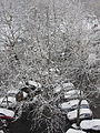 """ 13 snowfall in Milan 03.JPG"