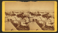 (View) from Observatory, from Robert N. Dennis collection of stereoscopic views.png