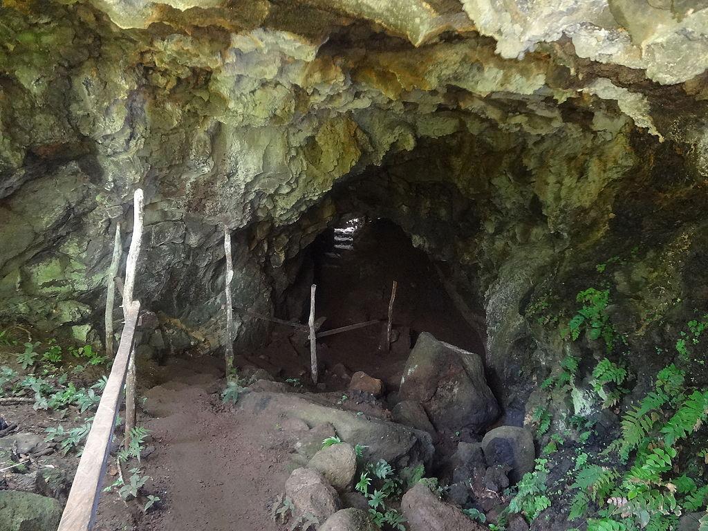 (lava tunnel (a) El Chato Reserve, Santa Cruz Highlands, Galápagos