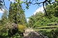 Ботанічний сад Подільського державного аграрно-технічного університету 04.jpg