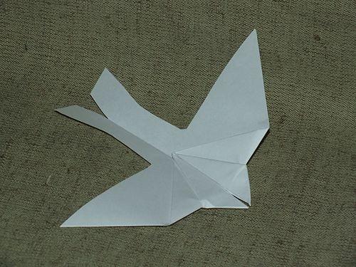 Как сделать самолет голубь