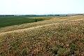Вид с горы Шагиртау - panoramio.jpg