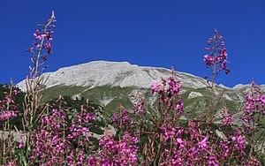 Vihren - Vihren Peak in summer
