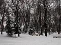 Вінниця - центральний парк 09.JPG