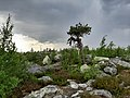 Гора Воттоваара 12.jpg